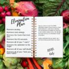 2b mindset, elimination plan, elimination diet. the elimination experience, elimination diet,elimination experience, 2b mindset weight loss program